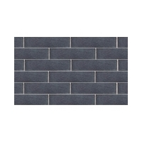 Facing tile LODE HERKULES  250x65x10 mm
