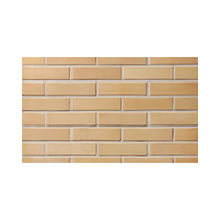 Facing tile LODE SARMĪTE 250x65x10 mm