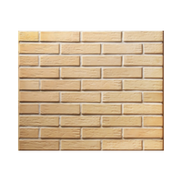 Facing tile LODE VECĀ SARMĪTE 250x65x10 mm