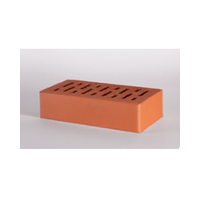 Perforated facing bricks LODE JANKA 250x60x65 mm